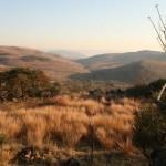 Malapa-völgy, Dél-Afrika 2011. A megtalálás helye középen távol. Fotó: Lee Berger