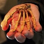 Intim – kéz a kézben