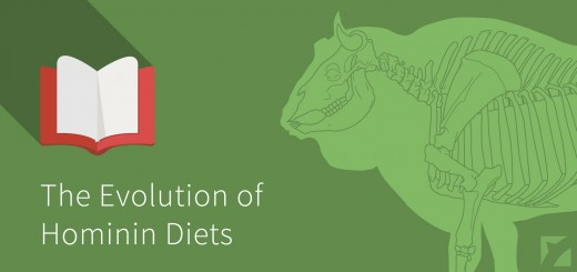 bejegyzes_fokep_evolution-of-hominin-diets