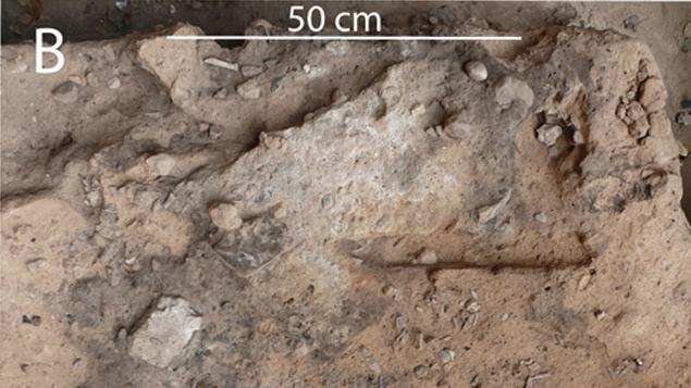El-Salt paleolitikus lelőhely, neandervölgyi ürülék