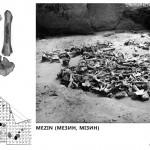Mamut mega-lelőhelyek: Mezsirics - struktúrák feltárás közben