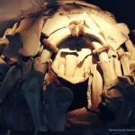 Mamut mega-lelőhelyek: Mezsirics - mamutcsont kunyhó rekonstrukciója vándorkiállításon