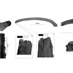 Mamut mega-lelőhelyek: Milovice - emberi beavatkozás nyomai a csontokon