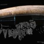 Mamut mega-lelőhelyek: Pavlov - a híres térkép mamutagyarba karcolva