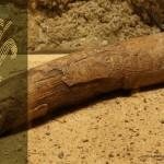 Mamut mega-lelőhelyek: Predmosti. Vénusz faragvány mamutagyaron